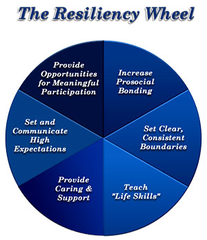 The Resiliency Wheel